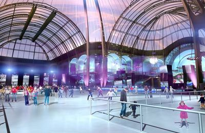 SPORT-Patin à glace-TRADITON-Noel-Grand Palais-Paris-France