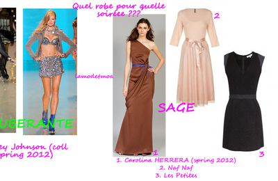 Selection de robe pour nouvel an : quelle robe ????