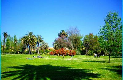 Jardin en Catalogne