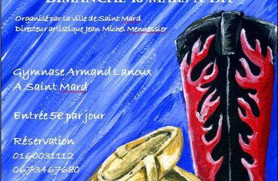 4ème Festival de Danse de Saint-Mard