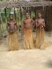 Lettre ouverte aux organisations nationaux et internationaux sur le sort des pygmées Baka de l'Est Cameroun