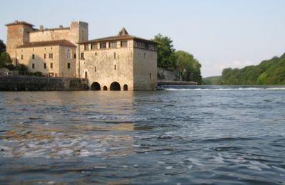 Comportement du sandre - Partie 2 : La rivière