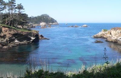 Point Lobos National Preserve :