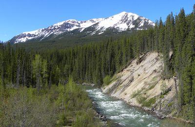 La route du lac Maligne - P.N.de Jasper