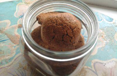 Biscuits Secs au Chocolat