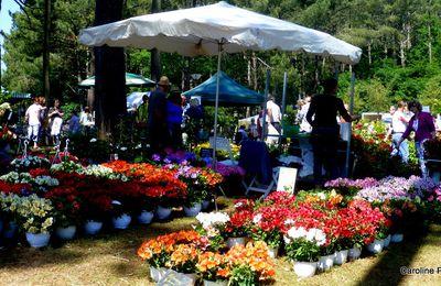 les jardins en fête au lac de Mimizan
