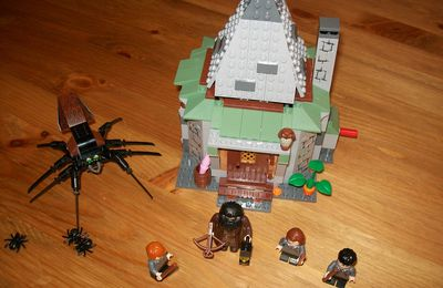 Revue du set Lego 4738 (Harry Potter)