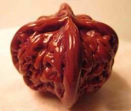 Les noix ouvragées - Dekoraciitaj juglandoj
