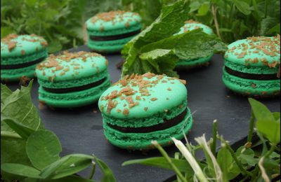 Macaron Menthe-Chocolat-Banane-Cannelle