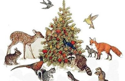 Christmas Animals le noel des animaux