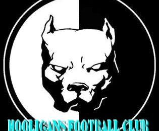 Hooligans Football club (HFC partie 1)