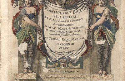 Les papillons décrits par Aldrovandi en 1602. Étude des noms propres.