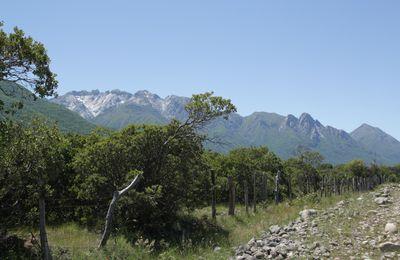 Superbe SanFabian. Vallee de SanCarlos - Beautiful San Fabian. San Carlos Valley