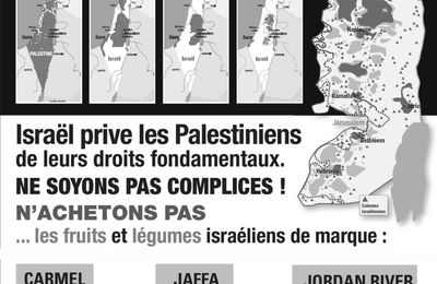 Campagne BDS, Collectif 63