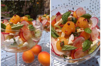 Cocktail de légumes et de fruits à la Feta et au vinaigre de mangue