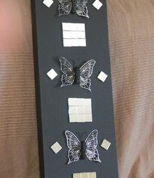 miroirs et papillons