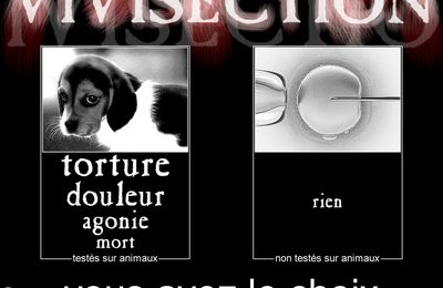 Vivisection : dites NON - Vivisection: say NO