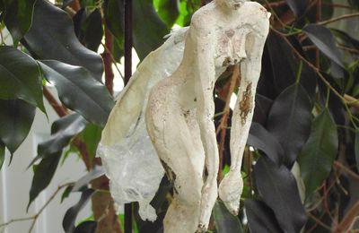 - 21 mars 2010 : Sculptures dans Ecrin de Verdure