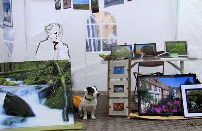 Place des arts à Stras