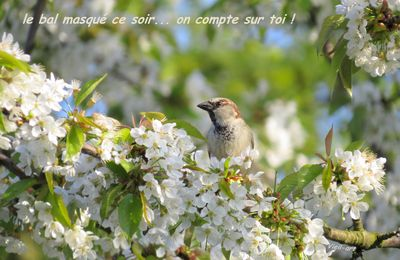 N'oublie pas...