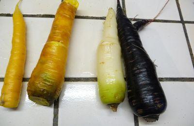 De quelle(s) couleur(s) sont les carottes??