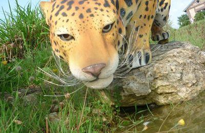 Jaguar en résine