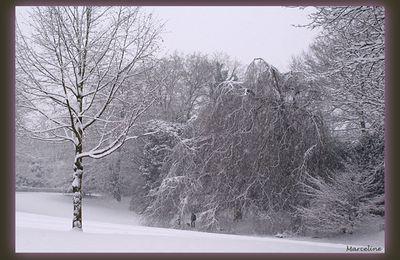 De la neige encore...