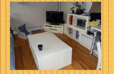 Des meubles de salon en carton