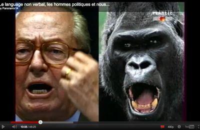 [émission TV-communication non verbale] Le langage corporel des politiques - Planète (diffusé en juin 2010)