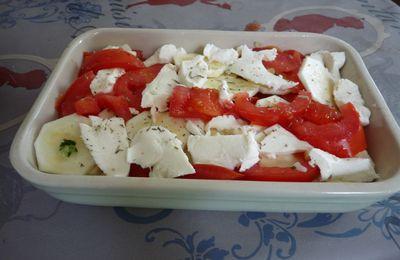 gratin tomate courgette mozarella