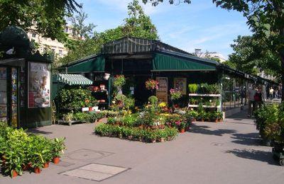 Ile de la Cité (Balade clés en main n°2-Part 1)