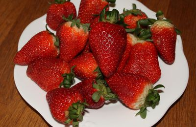 Le nouveau jardin d'essai 2013: les fraisiers !