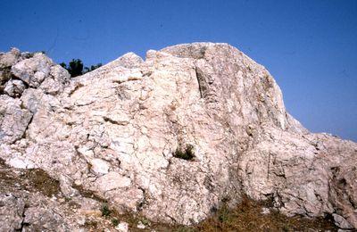 Les marbres de Provence : Trets