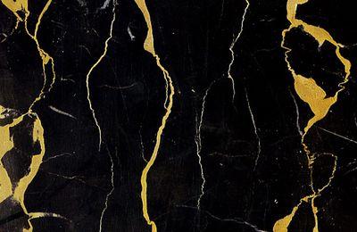 Les marbres de Provence : le portor de Saint Maximin