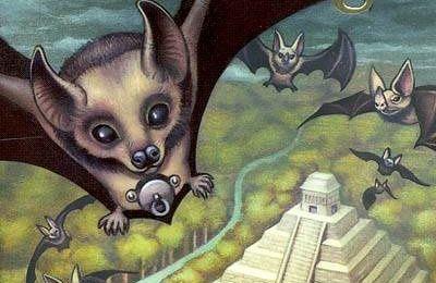 Sunwing, manipulations et complots au Royaume des chauves-souris