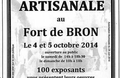 BRON : Le Fort de Bron