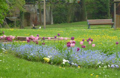 Les Massifs de fleurs à Niederbronn