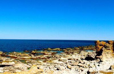 Week-end à Gotland