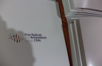 "Carpetas Corporativas ""Free Radicals and Antioxidants Group Chile"""
