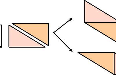Un rectangle, 1 coup de ciseaux, des polygones