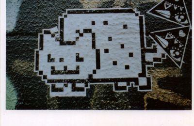 Street Art - Bruxelles - Meme Internet - St Géry - Argentique