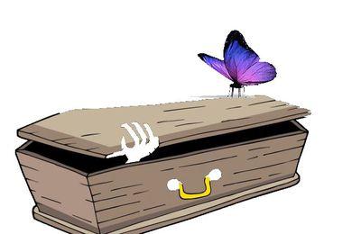 Le papillon n'est plus…