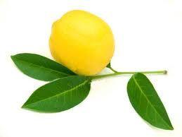 Colin au citron et à l'aneth.