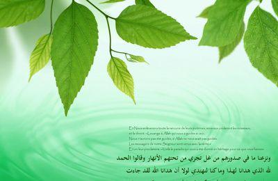 Les preuves claires de l'interdiction de la mixité entre les hommes et les femmes selon le Qor'an et la Sounna