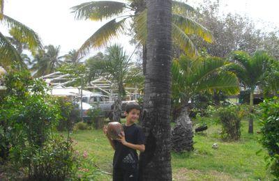 L'île de la Réunion et....