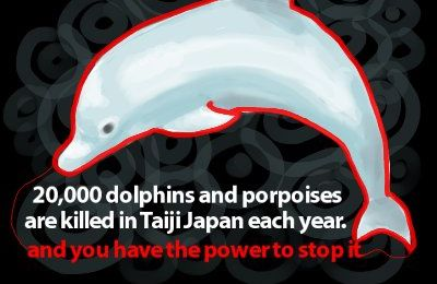 Mr Obama is in JAPAN , action neded for DOLPHINS