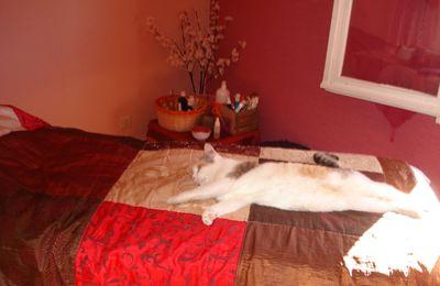 Massage Bien-Etre et.... entretien d'embauche