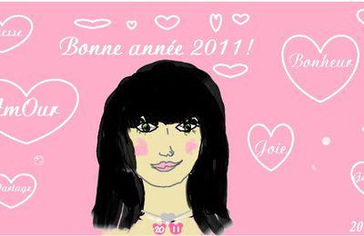 Bonne année 2011 !!