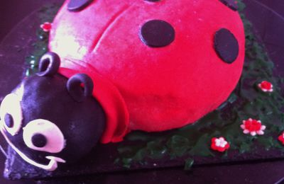 coccinelle cake