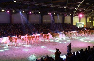 Swiss Expo : O 'Kalibra récidive pour la 3ème fois !
